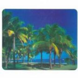 Mouse pad with picture(M1519)